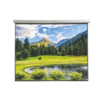 Экран Electric screen with remote control 350x219cm Matt White